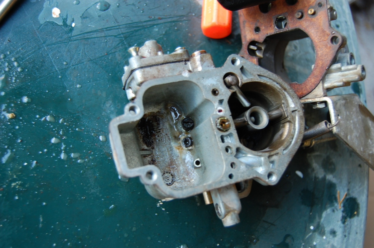 Carb Woes – BodesWell